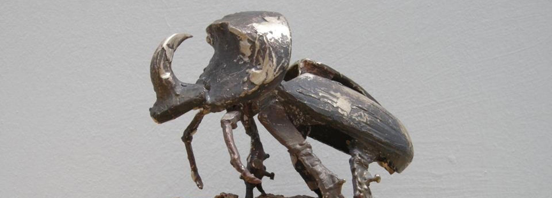 escarabajo-slider